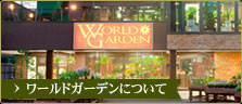 【観葉植物専門店】東京の観葉植物専門店 グラン …